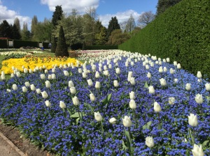 Beautiful gardens at Homestead Park, York