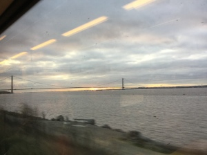 The new view on my train journey😊