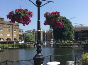 The hanging baskets in St Katherine's Dock looked lovely in the sunshine...