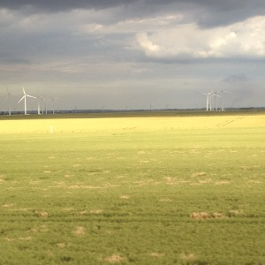 The wind turbines against the grey skies matched my mood as I neared home 13 hrs after setting off........